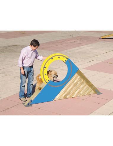 Roue pour parcours canin