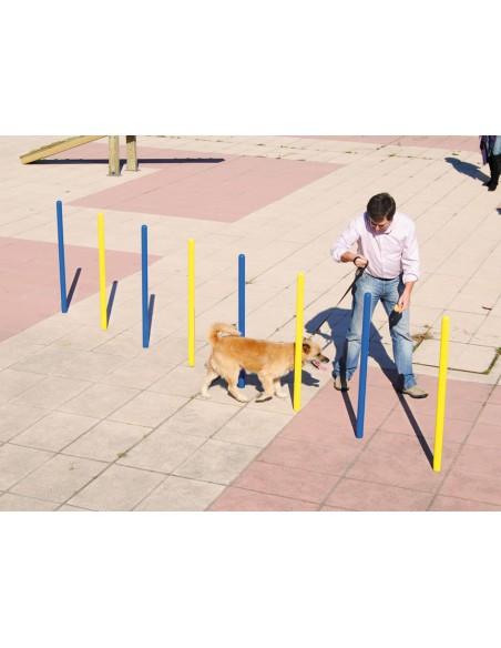 Slalom pour parcours canin